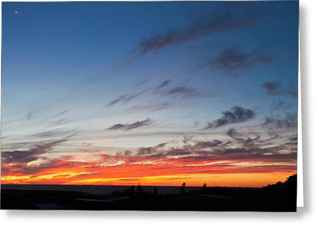 Baja California Greeting Cards - Silhouette Of Trees At Sunset, Todos Greeting Card by Panoramic Images