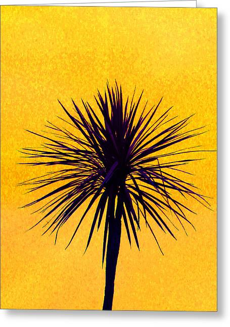Australian Cordyline Greeting Cards - Silhouette On Gold Greeting Card by Margaret Saheed