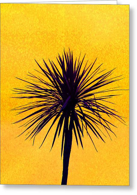 Cordylines Greeting Cards - Silhouette On Gold Greeting Card by Margaret Saheed