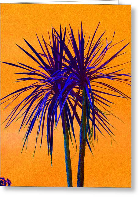 Australian Cordyline Greeting Cards - Silhouette On Orange Greeting Card by Margaret Saheed