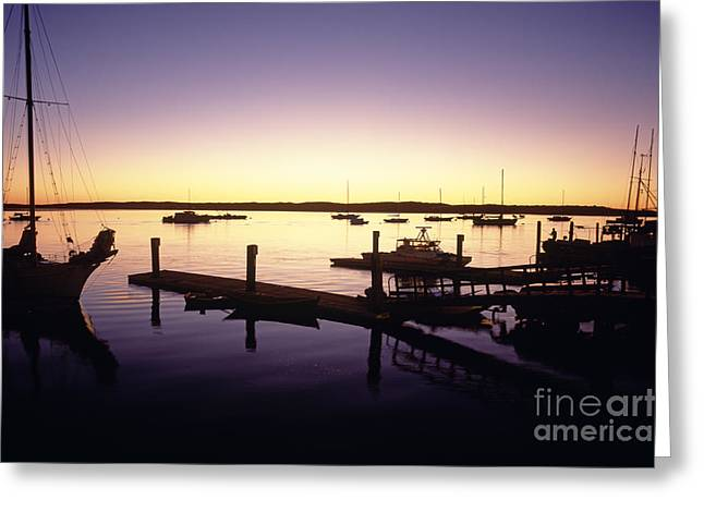 Ocean Photography Greeting Cards - Silhouetted sailboats Morro Bay Greeting Card by Jim Corwin