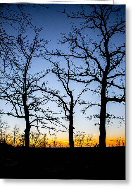 Silhouette Of Tree Greeting Cards - Silhouettes at Sunset Greeting Card by Parker Cunningham