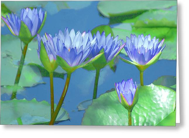 Green Leafs Greeting Cards - Silken Lilies Greeting Card by Holly Kempe