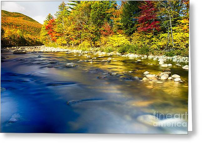 Saco River Greeting Cards - Silky Saco River Autumn Scenic I Greeting Card by George Oze