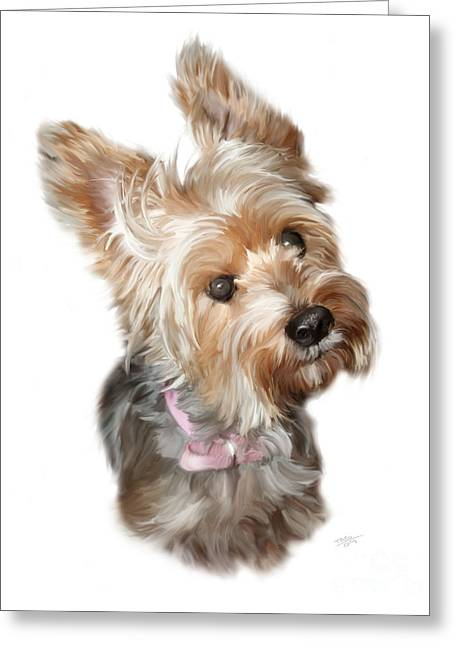 Portrait Artwork Greeting Cards - Silky Terrier Greeting Card by Paul Tagliamonte