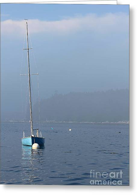 Docked Sailboats Greeting Cards - Sill Boat in Maine Greeting Card by Heidi Piccerelli
