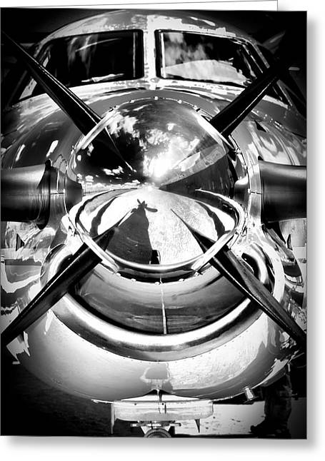 Silver 12 Greeting Card by Paul Job