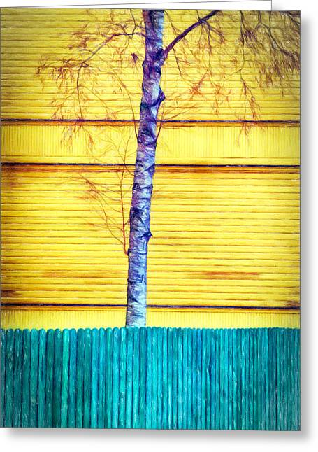 The Wooden Cross Greeting Cards - Silver Birch Tree behind The Painted Fence Greeting Card by Paul Bucknall