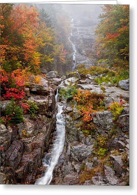 Foliage In White Mountains Greeting Cards - Silver Cascade Greeting Card by Jeff Sinon