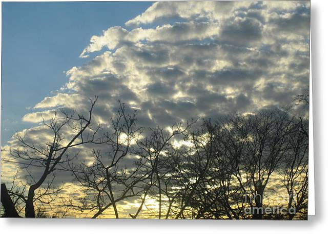 Layers Greeting Cards - Silver Clouds Greeting Card by Tara  Shalton
