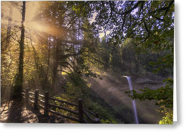 Silver Falls State Park Greeting Cards - Silver Falls Light Greeting Card by Mark Kiver