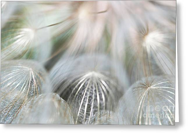 Parachute Ball Greeting Cards - Silver Fire Greeting Card by Gwen Gibson