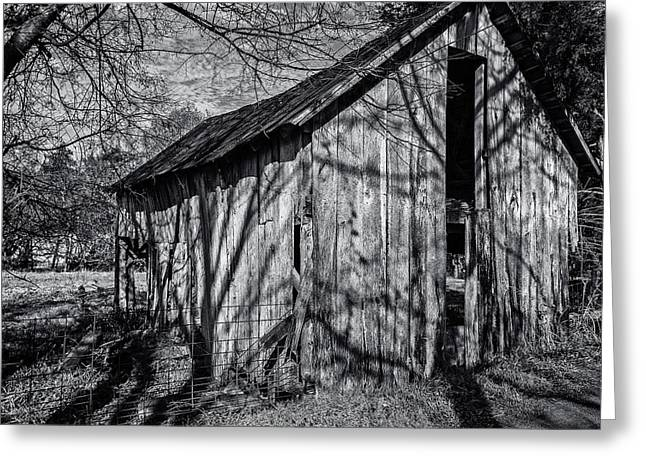Tennessee Barn Greeting Cards - Silver Grey Greeting Card by CJ Schmit