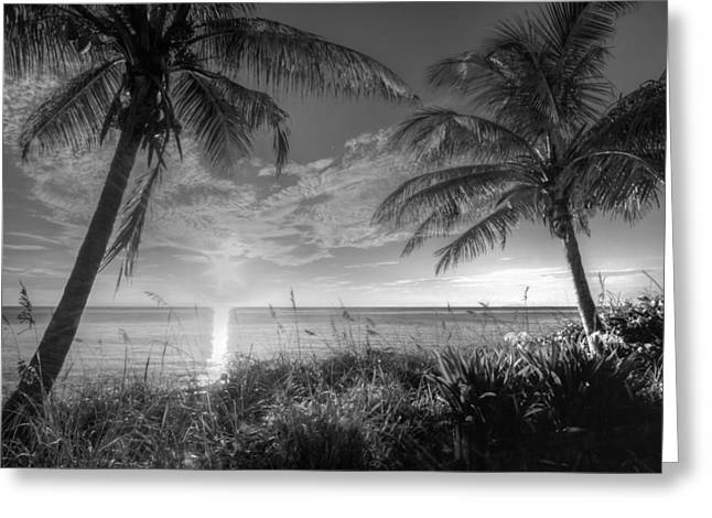 Florida House Greeting Cards - Silver Morning Greeting Card by Debra and Dave Vanderlaan