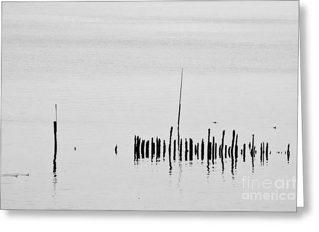 Prick Greeting Cards - Silver Pond and Poles Greeting Card by Heiko Koehrer-Wagner