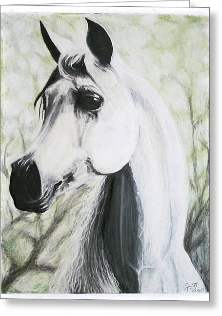 Arabian Pastels Greeting Cards - Silver Shadow Greeting Card by Lisa Nadler
