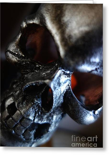 Solstice Greeting Cards Greeting Cards - Silver Skull Greeting Card by Jacqueline Athmann