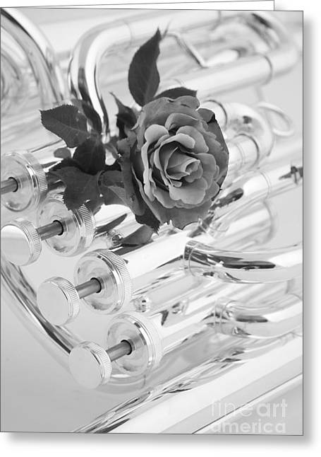 Matte Print Greeting Cards - Silver Tuba Greeting Card by M K  Miller