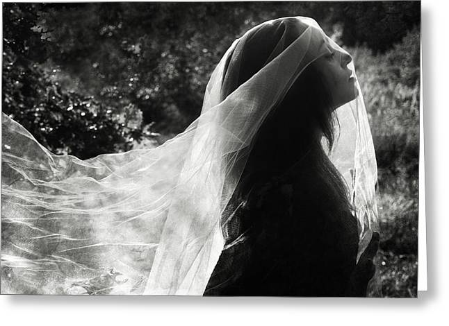 Mysterious Greeting Card featuring the photograph Silver Veil by Cambion Art