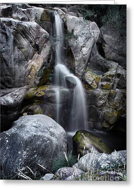 Moss Greeting Cards - Silver Waterfall Greeting Card by Carlos Caetano