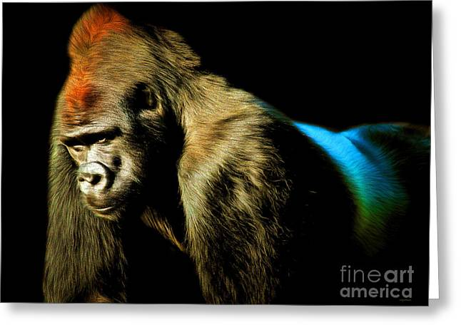 Gorilla Digital Greeting Cards - Silverback 20150210brun Greeting Card by Wingsdomain Art and Photography