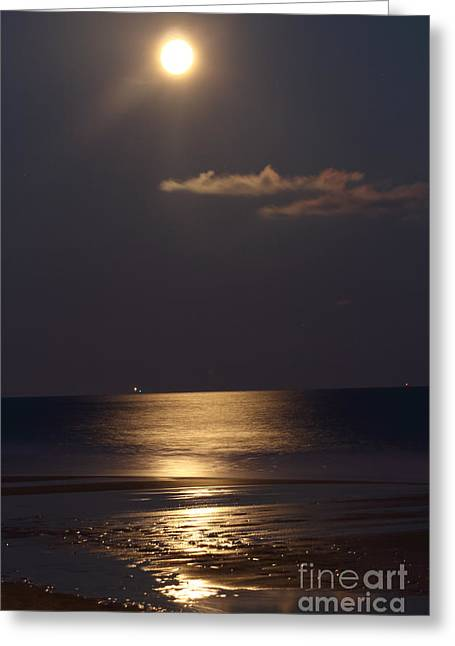 Sea Moon Full Moon Greeting Cards - Silvered Sea Greeting Card by Frances Marian Lewis