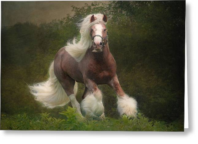 Equine Greeting Cards - Simon and the storm Greeting Card by Fran J Scott