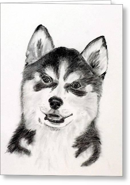 Husky Drawings Greeting Cards - Simon Greeting Card by Jane Baribeau