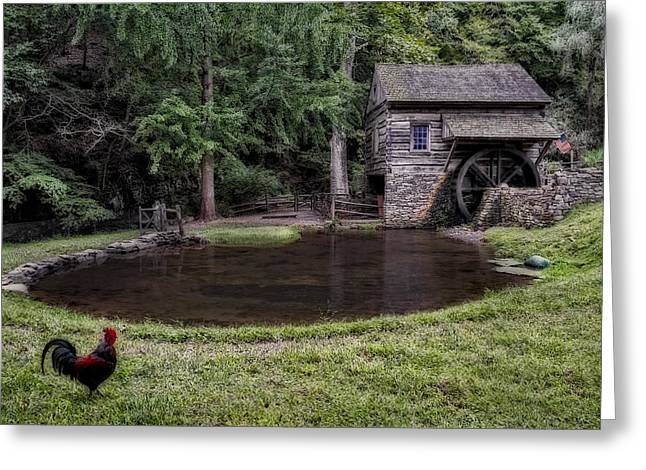 Old Mill Scenes Greeting Cards - Simple Country Life Greeting Card by Susan Candelario