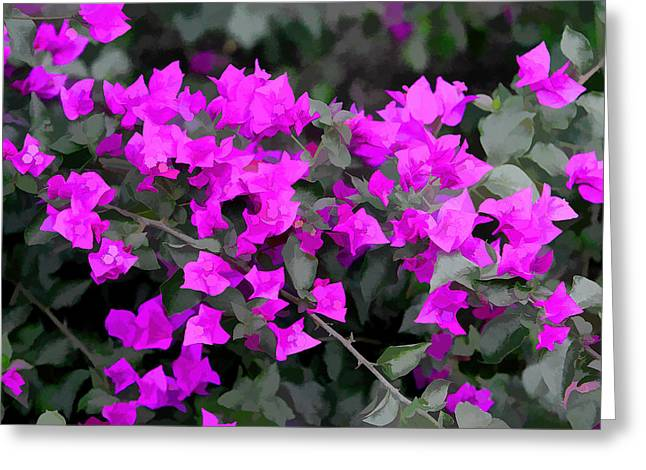 Simple Magenta Floral Art Greeting Card by Linda Phelps