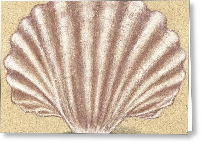 Sand Pastels Greeting Cards - Simple Shell #2 Greeting Card by Monica Margarida