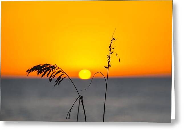 My Ocean Greeting Cards - Simple Sunset  Greeting Card by Kevin Cable
