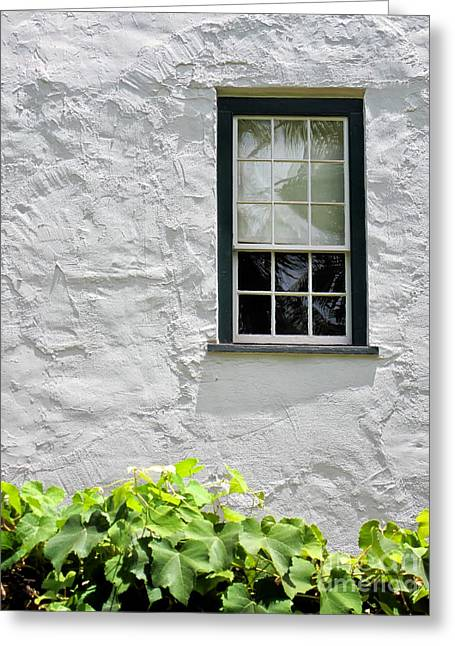 Lahaina Greeting Cards - Simple Window Greeting Card by Kate McKenna