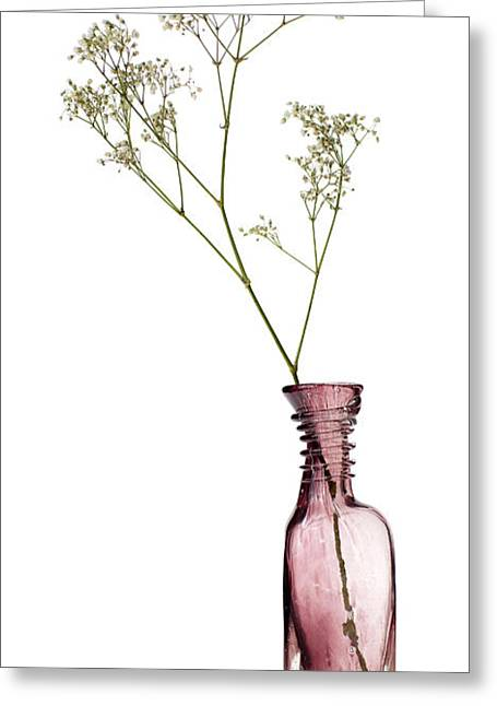 Glass Vase Photographs Greeting Cards - Simplicity Greeting Card by Dave Bowman