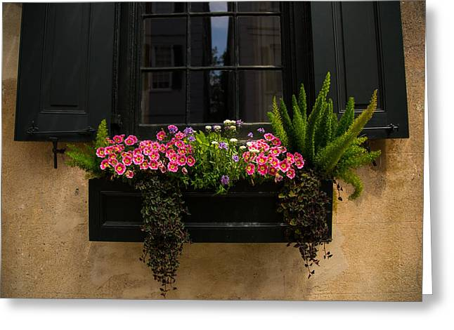 Flower Boxes Greeting Cards - Simply Charleston Greeting Card by Karol  Livote