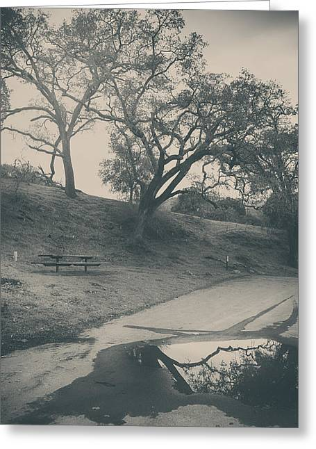 Park Benches Photographs Greeting Cards - Simply Pretend Greeting Card by Laurie Search