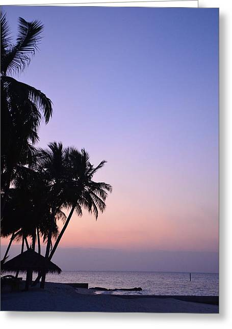 Photos Of Sunset Greeting Cards - Simply Sunset Greeting Card by Corinne Rhode