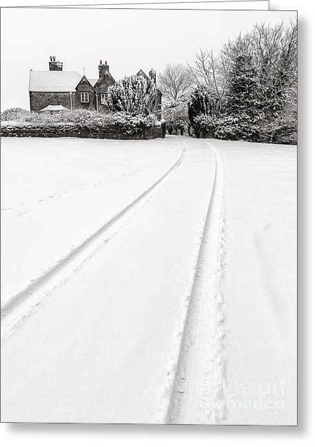 Simply Winter Greeting Card by Adrian Evans