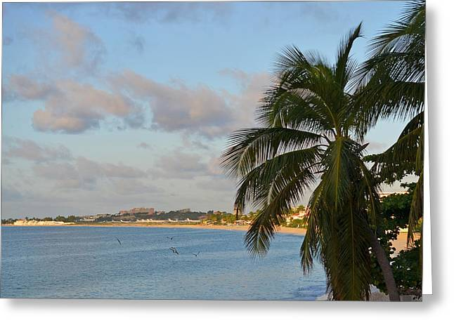 Simpson Greeting Cards - Simpson Bay Saint Martin Greeting Card by Toby McGuire