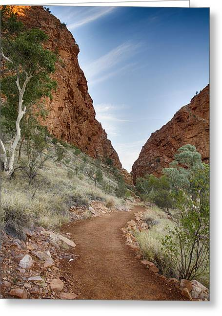 Simpson Greeting Cards - Simpsons Gap Path Greeting Card by Douglas Barnard