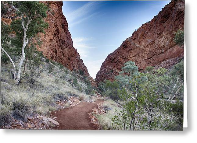 Simpson Greeting Cards - Simpsons Gap Path V2 Greeting Card by Douglas Barnard
