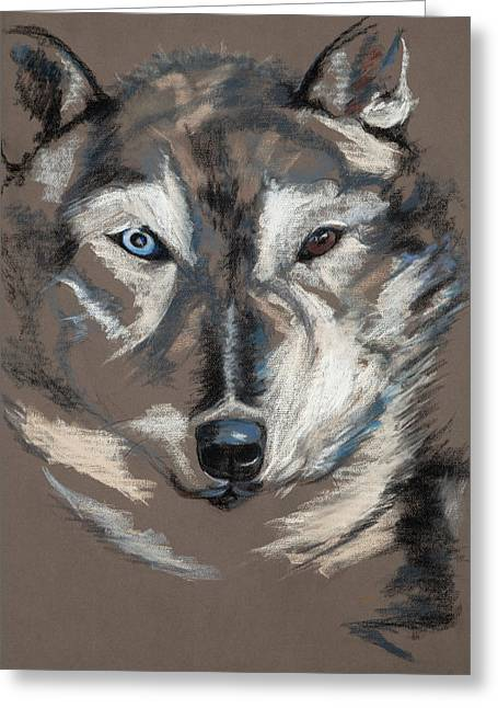 Husky Pastels Greeting Cards - Simund Greeting Card by Jocelyn Paine