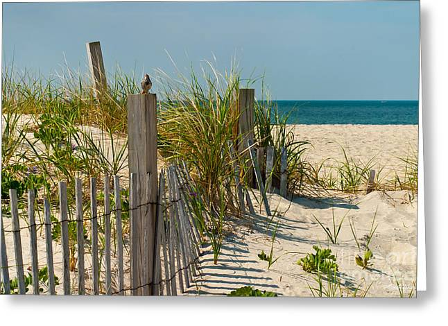 Singer at the Shore Greeting Card by Michelle Wiarda