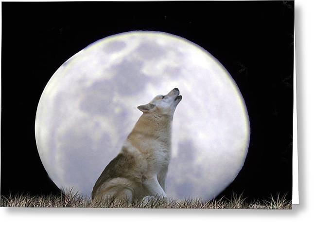 Wolf Moon Greeting Cards - Singing Moon Greeting Card by Stephanie Laird