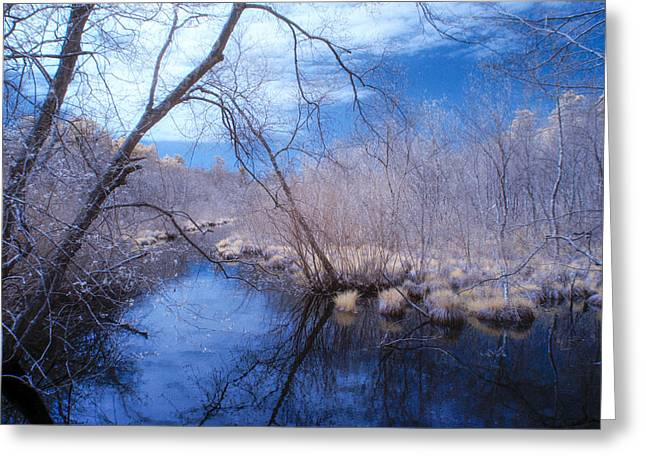 Infer Greeting Cards - Singing the River Blues Greeting Card by Steve Gravano