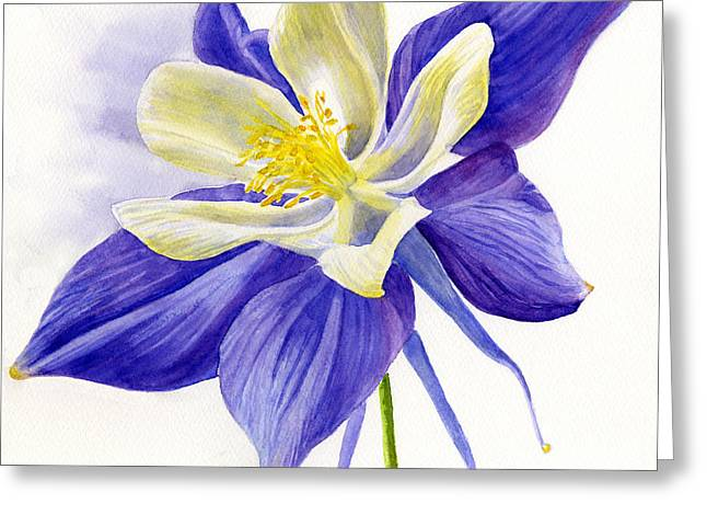Single Blue Columbine Greeting Card by Sharon Freeman