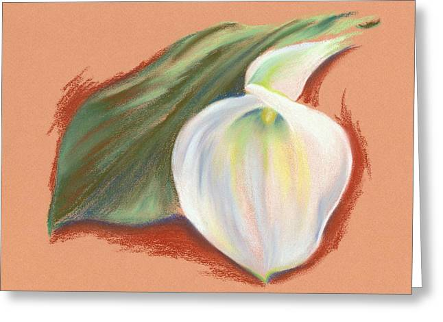 Calla Lily Pastels Greeting Cards - Single Calla Lily and Leaf Greeting Card by MM Anderson