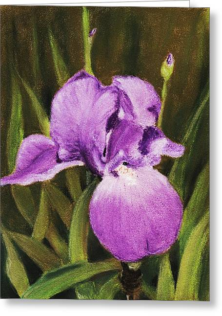 Close Up Pastels Greeting Cards - Single Iris Greeting Card by Anastasiya Malakhova