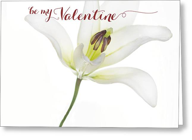 Valentine Greeting Cards - Single Lily Valentine Greeting Card by Rebecca Cozart