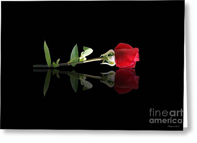 Refection Greeting Cards - Single Rose Greeting Card by Stephanie Laird